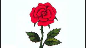صور ورود كرتون صورة وردة جميلة المميز