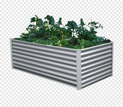 wall raised bed gardening cold frame