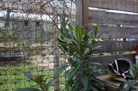 Diy Trellis Ideas For Beans Peas And How They Re Different Milkwood Permaculture Courses Skills Stories