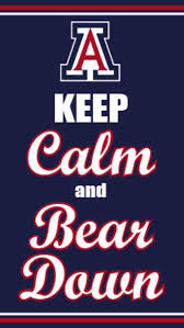 arizona wildcats bears