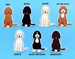 Goldendoodle Decal Etsy