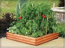 small vegetable garden plans
