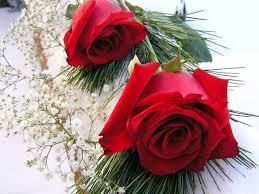 ورود حمراء رومانسية