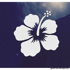 Hawaii Hawaiian Islands Hibiscus Flower 1 Vinyl Window Decal Car Bumper Sticker K9k40833