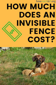 Thinking About An Invisible Fence For Your Pet But Do Not Know What It Costs Check Out Our Free Database To See What Others A Invisible Fence Fence Invisible