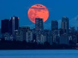 Luna piena di fiori: come guardare la luna di miele finale del ...
