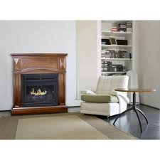 100 free standing ventless fireplace