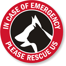 In Case Of Emergency Label Rescue Pets Window Decal With Graphic Sku Lb 1580