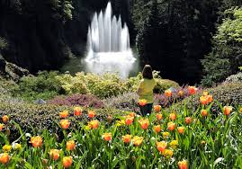 world renowned butchart gardens on