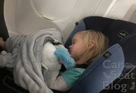 2020 recommended cats for airplane