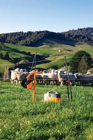 The Value Of Portable Electric Fences On The Farm Electric Fence Livestock Fence Farm Fence
