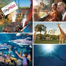 tampa bay citypass 9 day ticket
