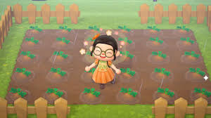 Celebrating My New Pumpkin Patch With A Pumpkin Dress Not My Design Im So Excited Animalcrossing