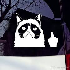 2020 Car Stying Grumpy Cat Flippin Off Funny Cool Graphics Car Window Sticker Vinyl Decal New Design Jdm From Xymy767 1 31 Dhgate Com