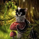 Sondra Barnes (sonbarnes123) on Pinterest