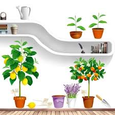 Doll House Furniture Best Price Fresh Orange Lemon Tree Pots Wall Stickers House Home Decor Fruit Plants Poster Self Adhesive Decals Dining Room Wall Papers
