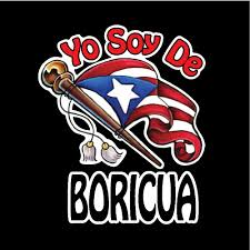 Puerto Rico Puerto Rican Car Decal Town Sticker Rio Grande Yauco Ebay