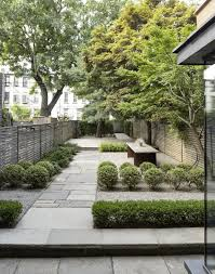 how to use plants in a city garden