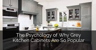gray kitchen cabinets are so por