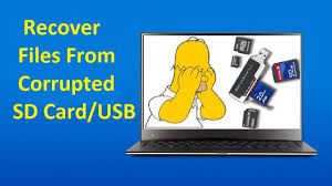 corrupted sd card or usb drive
