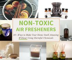 Non Toxic Air Fresheners Safer Alternatives That Work Nature S Nurture