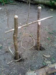 inland hunter bushcraft course