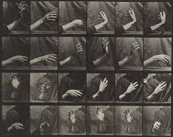 Eadweard J. Muybridge | MoMA