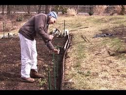 Fencing A Vegetable Garden Youtube