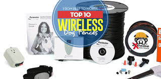 Top 10 Best Wireless Dog Fence Systems Of 2018 Tested And Reviewed