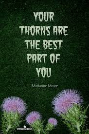 your thorns are the best part marianne moore quotes com