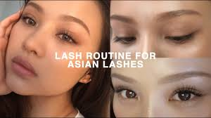 lash routine for straight asian lashes