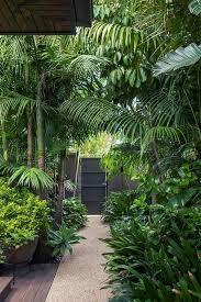 a tropical garden in the heart of