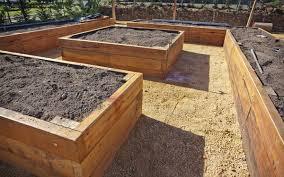 beginner raised bed gardening guide