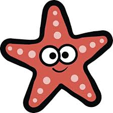 Amazon Com Cute Silly Starfish Cartoon Emoji Pink Vinyl Decal Sticker 12 Wide Automotive