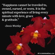 quote happiness is a spiritual experience com
