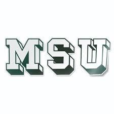 Michigan State Msu Block Letters Vintage Retro Logo Michigan Etsy In 2020 Michigan State Michigan State Logo Michigan Sticker