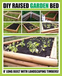 raised garden bed with landscaping timbers