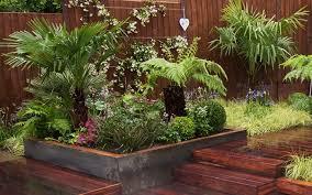 plants to get a tropical garden