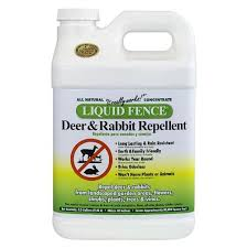 Liquid Fence A Good Deer And Rabbit Repellent For Your Roses The Garden Lady
