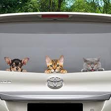 Can You See Me Now Bengal Cat Car Door Fridge Laptop Sticker V1 Follus Com