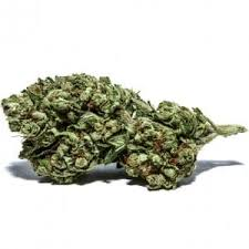 Image result for tangie strain""