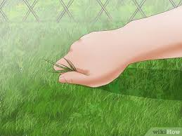 How To Remove A Chain Link Fence With Pictures Wikihow