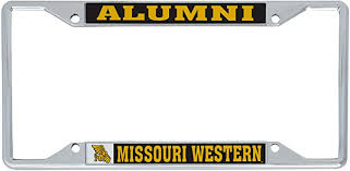 Desert Cactus Grand Valley State University Gvsu Lakers Ncaa Metal License Plate Frame For Front Or Back Of Car Officially Licensed Alumni Frames License Plate Covers Frames