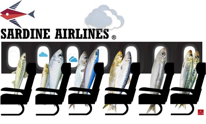 Resultado de imagen para sardines aIRGWAYS.COM