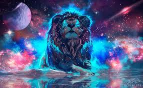lion 4k ultra hd wallpaper background