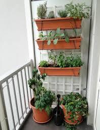 patio vegetable garden design where