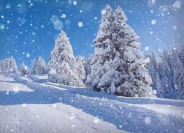 Image result for snowing images