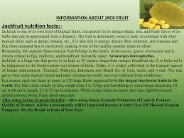 jackfruit nutrition facts