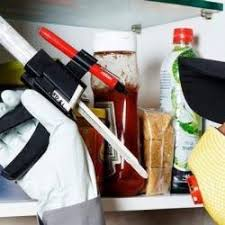 Pest Control India Pvt Ltd, Ashram Road - Residential Pest Control Services  in Ahmedabad - Justdial