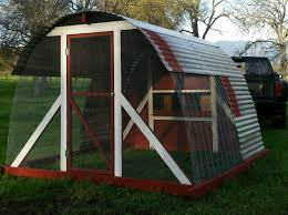 Ms Biddy S Cattle Panel Hoop Coop Backyard Chickens Learn How To Raise Chickens